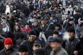 Мигранты оформили разрешения на работу в России