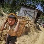 В мире сократилось количество работающих детей